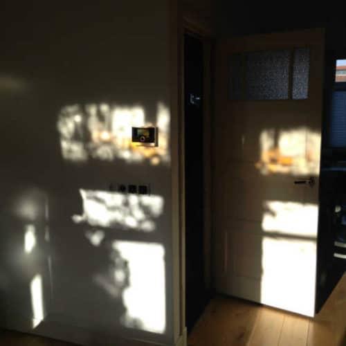 In het licht van Frank Lloyd Wright